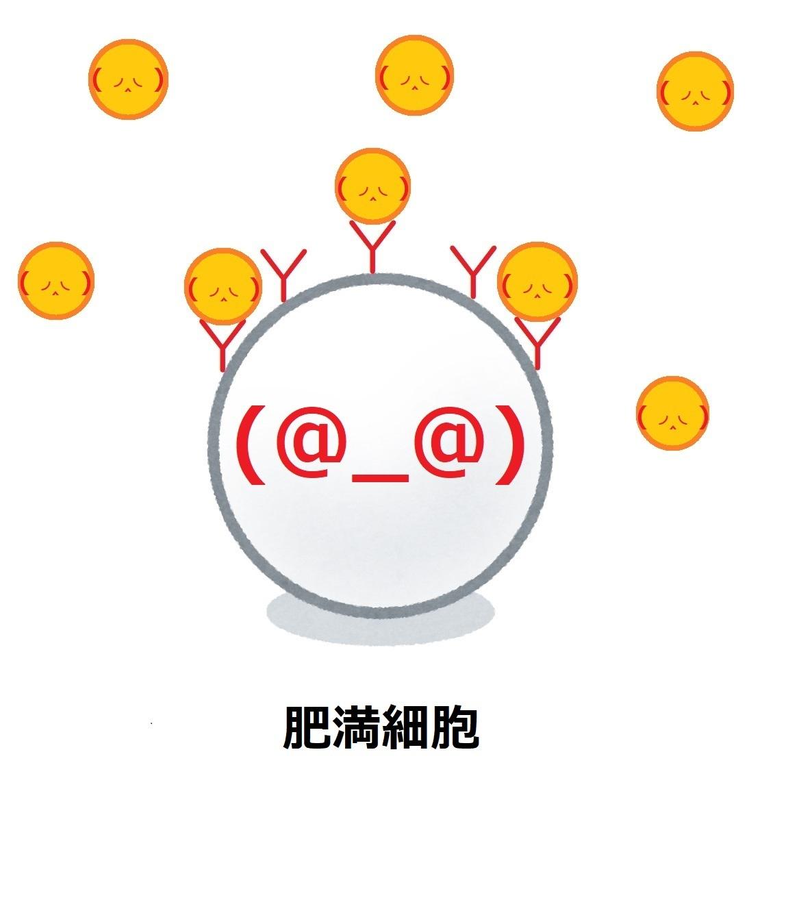 アンチエイジング ④_e0246398_21474786.jpg
