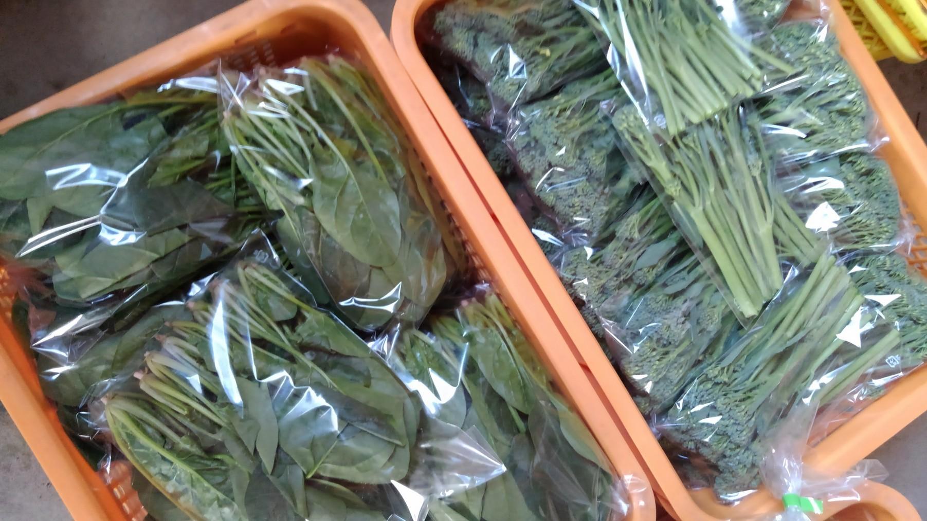 明日搬入する産直野菜です。_d0026905_12441750.jpg