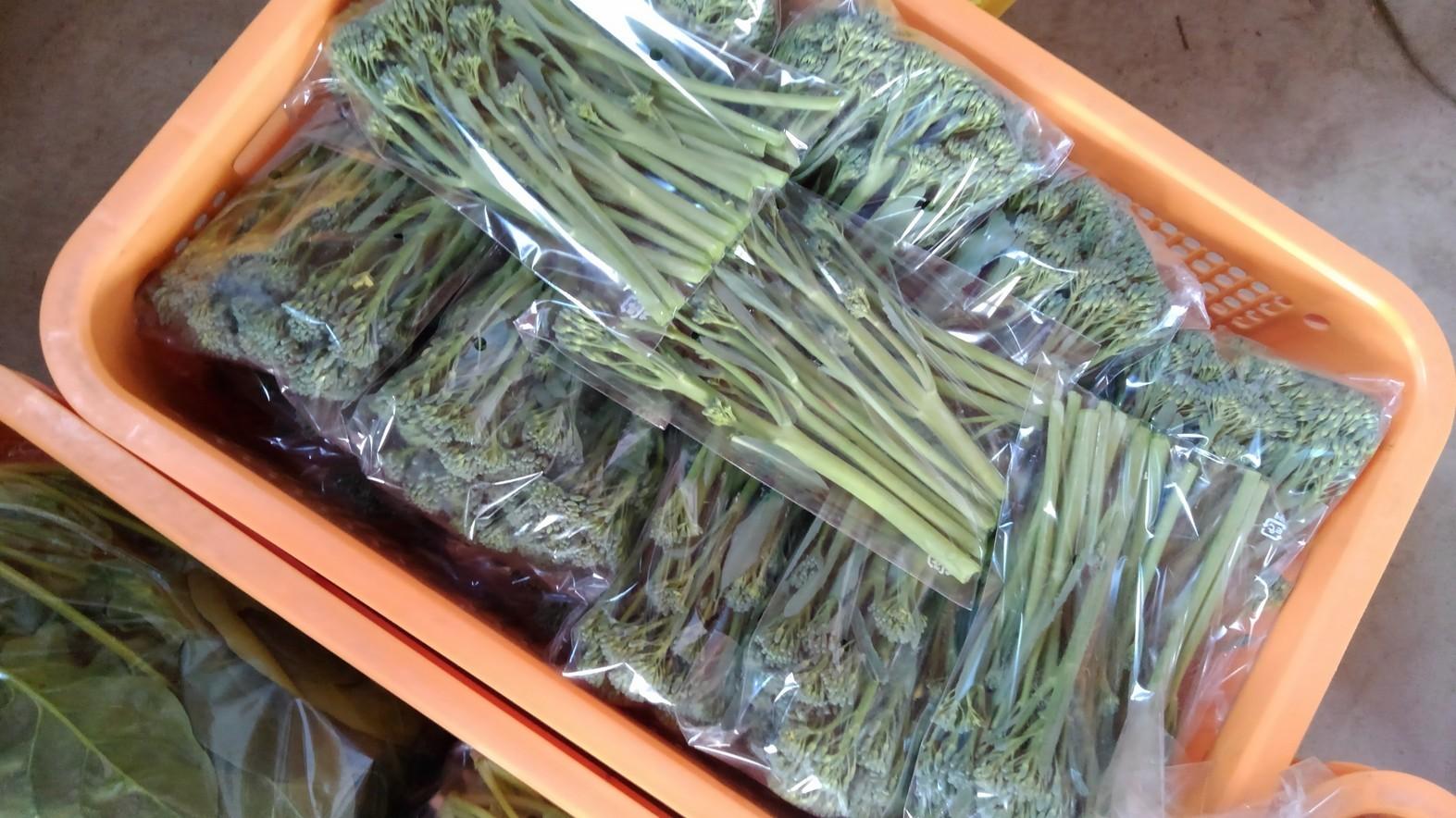 明日搬入する産直野菜です。_d0026905_12441794.jpg