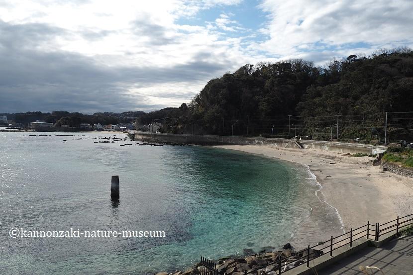 たたら浜の風景 いろんなモードで撮ってみた_a0386621_17343822.jpg