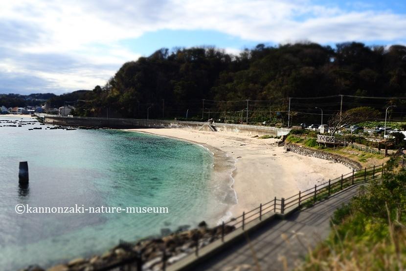 たたら浜の風景 いろんなモードで撮ってみた_a0386621_17344303.jpg