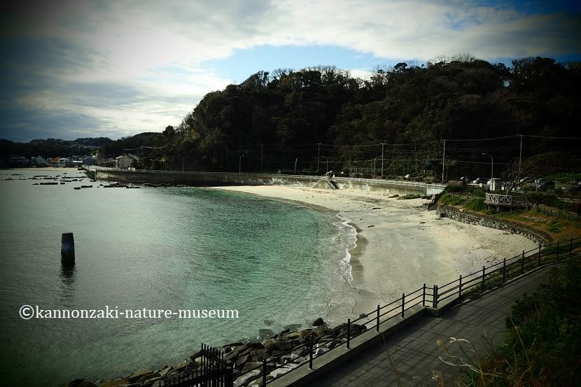 たたら浜の風景 いろんなモードで撮ってみた_a0386621_17345265.jpg