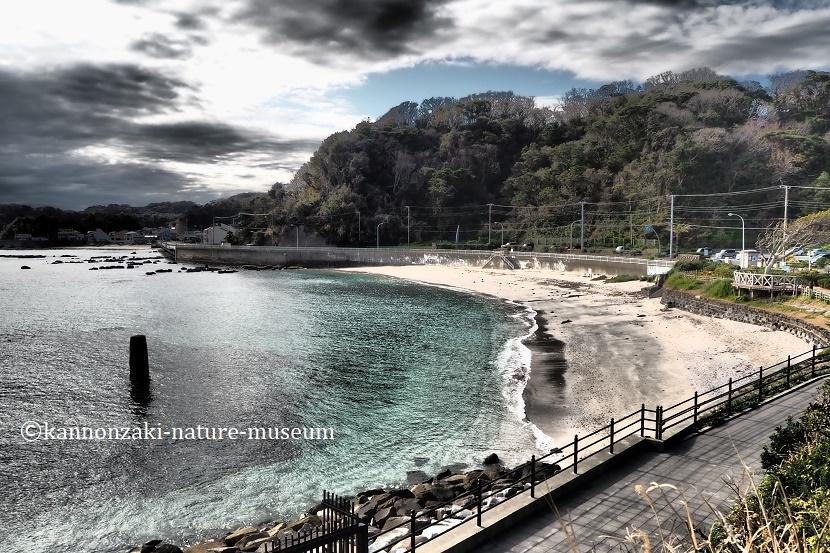 たたら浜の風景 いろんなモードで撮ってみた_a0386621_17345853.jpg