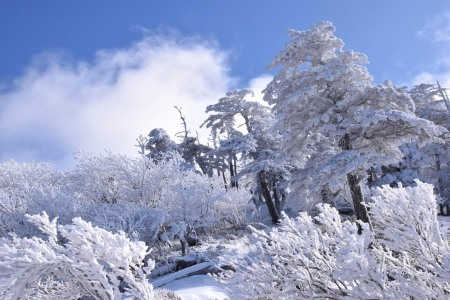 2月1日(土) 二代目登山報告_c0089831_22205601.jpeg