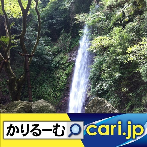 2020年1月分 広報・記事等 cari.jp_a0392441_15030764.jpg