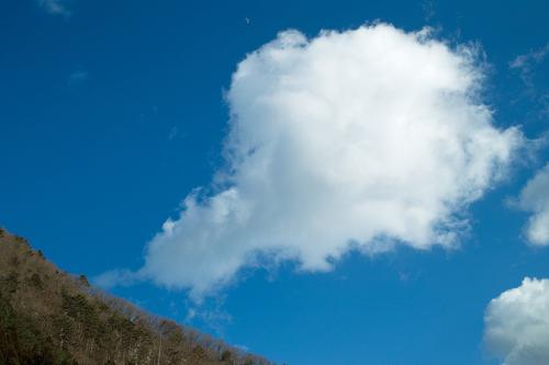 雪、二月も「逃げ月」に・・・椋川と武奈ヶ岳の雪景色_d0005250_17405367.jpg