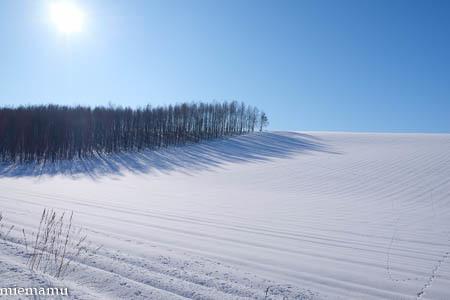 凛とした冬景色~1月の美瑛_d0340565_19475149.jpg