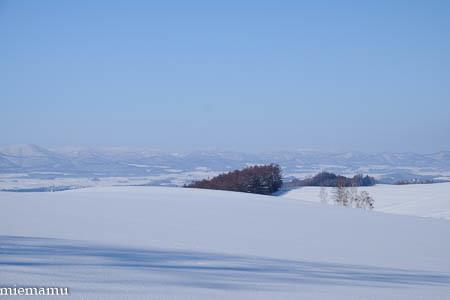 凛とした冬景色~1月の美瑛_d0340565_19475685.jpg