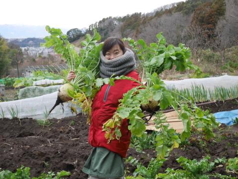 2・4開店の「Magic hour」に六国見山産野菜提供1・31_c0014967_10233702.jpg