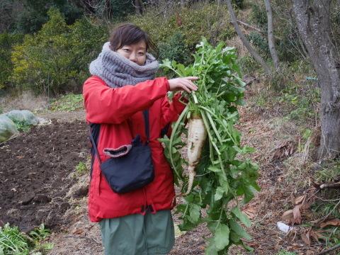 2・4開店の「Magic hour」に六国見山産野菜提供1・31_c0014967_10242183.jpg