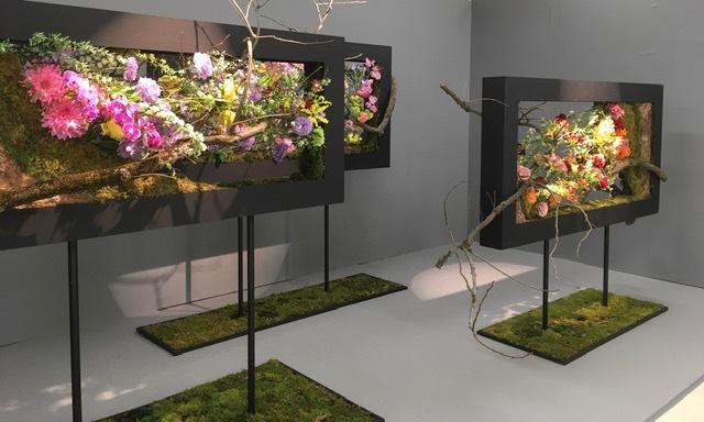 第69回関東東海花の展覧会_d0334669_18351352.jpg