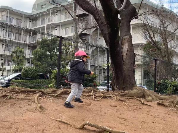 宮前平ルーム〜公園〜_a0318871_00142135.jpg