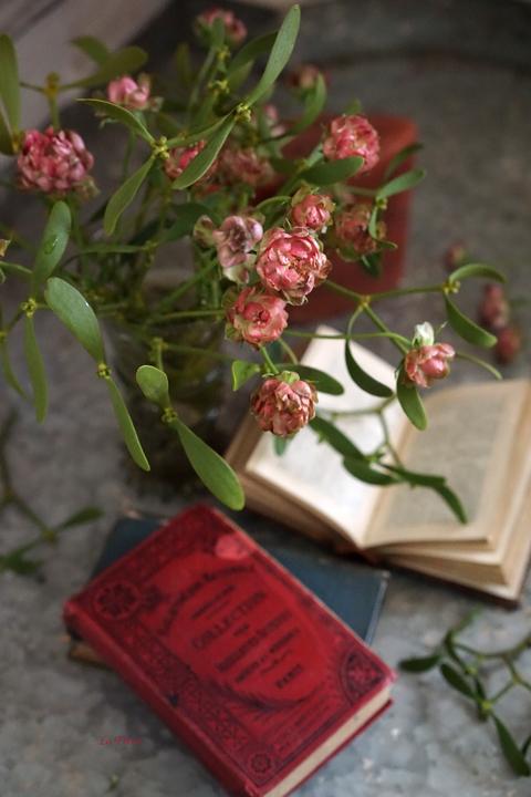 rose ラディッシュ_f0127281_16474627.jpg
