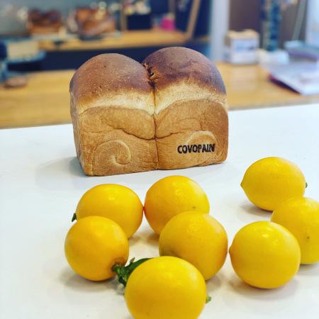 2月分食パン全国発送ご予約開始のご案内_c0083484_00171165.jpeg