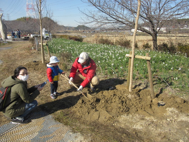 住民参加による八重桜の植樹_d0247833_17303593.jpg