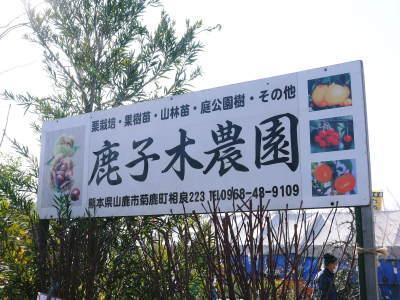 第45回JA植木まつり(IN熊本県農業公園(カントリーパーク))に行ってきました!(2020)_a0254656_17341574.jpg