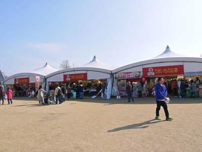 第45回JA植木まつり(IN熊本県農業公園(カントリーパーク))に行ってきました!(2020)_a0254656_18080536.jpg