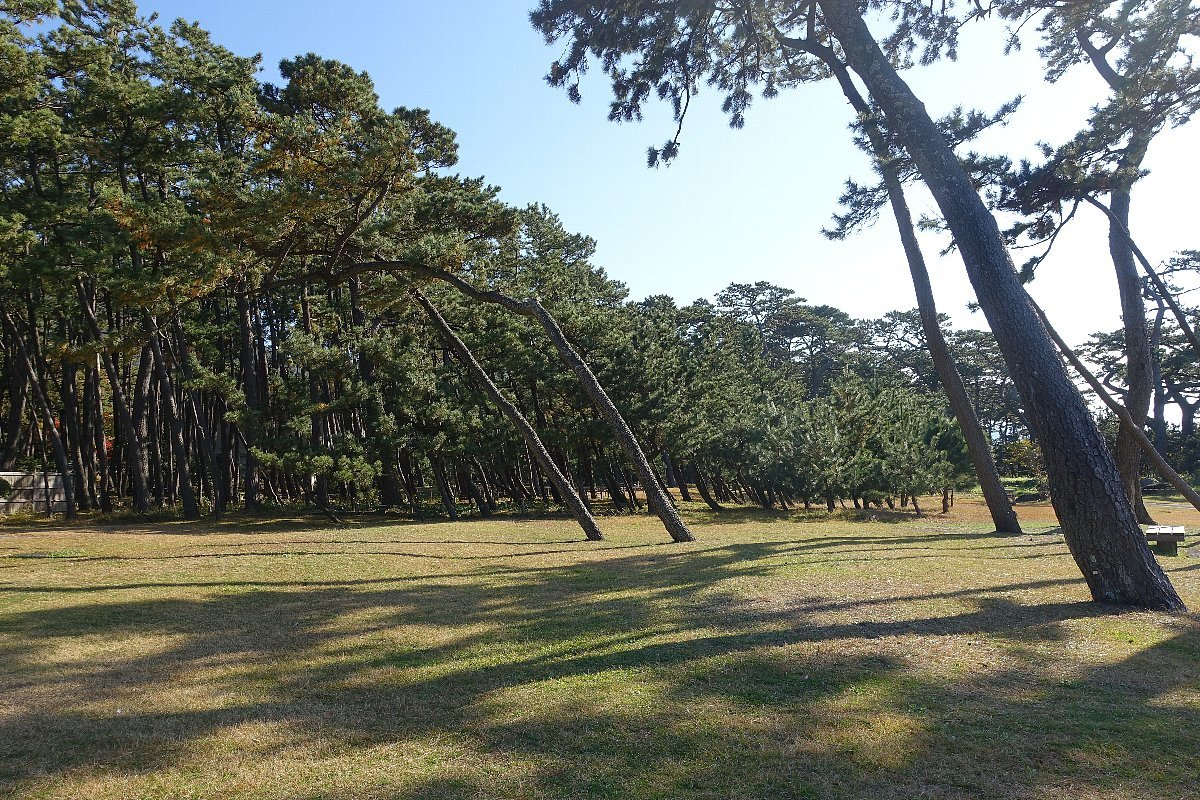 沼津御用邸記念公園 本邸跡_c0112559_08385652.jpg