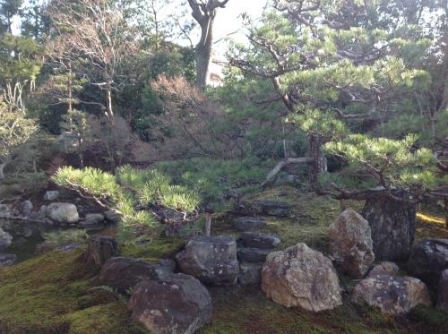 京の節分、坐禅と花と和菓子_b0153663_22550188.jpeg