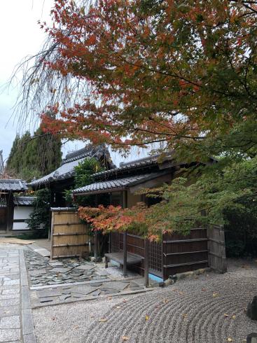 東福寺からの光明院_e0189465_17542196.jpg