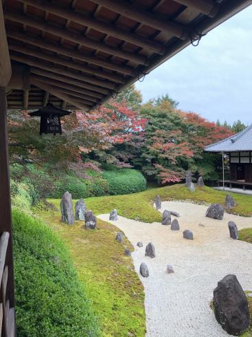 東福寺からの光明院_e0189465_17542336.jpg