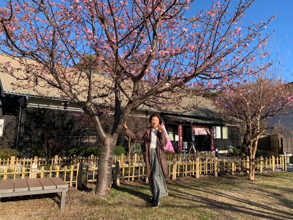 稲取温泉_e0040673_11544181.jpg