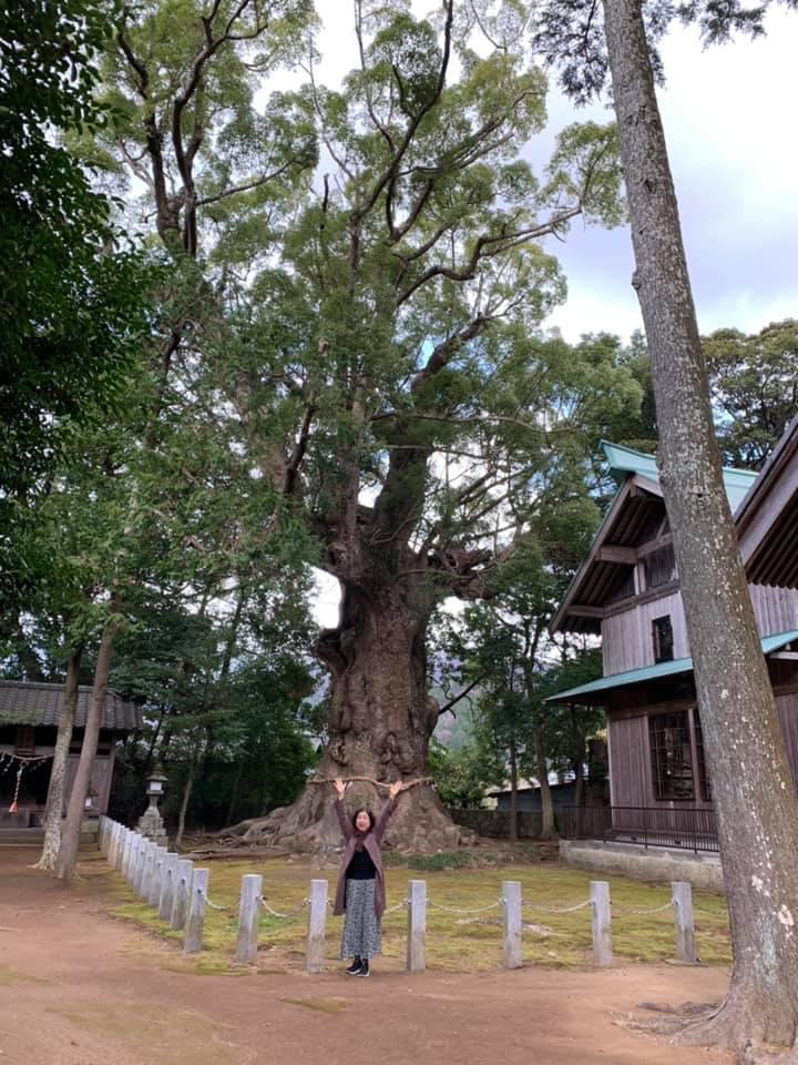 稲取温泉_e0040673_12032785.jpg
