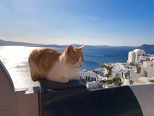 ギリシャ旅行記3_c0104293_13103711.jpg