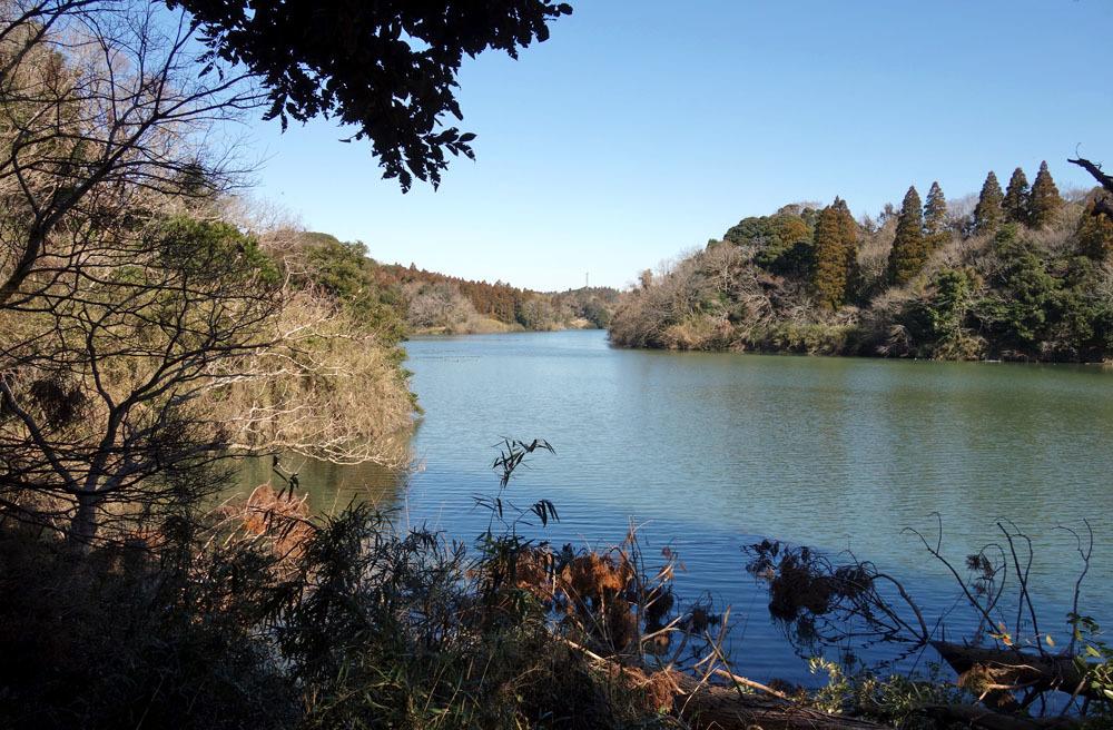 バス釣りの雄蛇ヶ池 遊歩道は立入り禁止中_b0114798_16264104.jpg