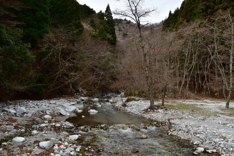 Nishi-Tan Roundwalk その8 下山_b0223512_23181947.jpg