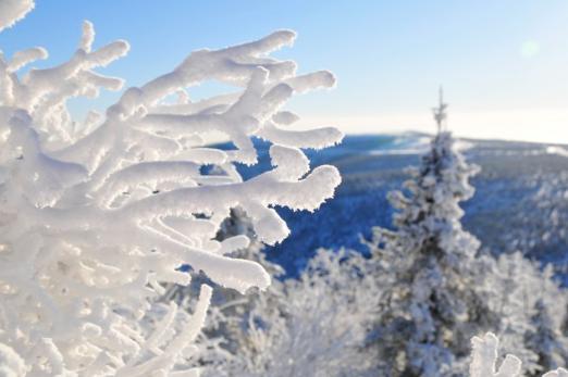 樹氷 -Rime Ice-_b0135948_15512841.png