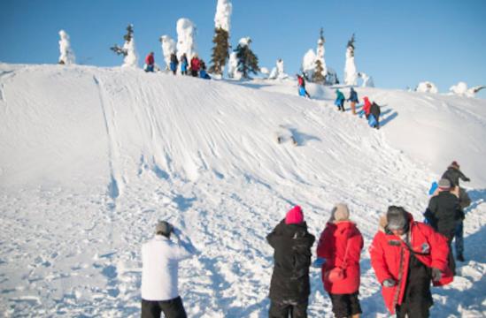 北極圏で雪すべり!?_b0135948_16073253.png