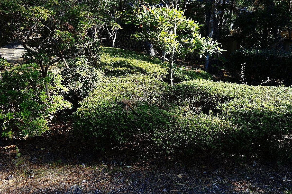 沼津御用邸記念公園 東附属邸_c0112559_08450402.jpg