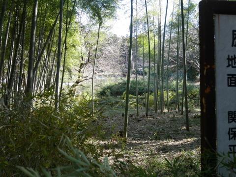 神奈川県有竹林を整備2・2六国見山手入れ(上)_c0014967_09335155.jpg