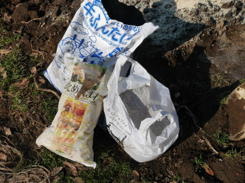 灰など撒き、ジャガイモとサトイモの植え付け準備2・2_c0014967_21062127.jpg