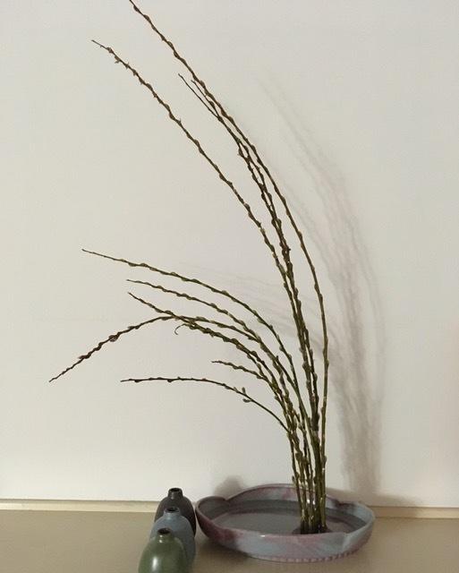 庭に咲く草花で生け花の練習ーネコヤナギ、ハナナシ等々_e0350971_06093612.jpg
