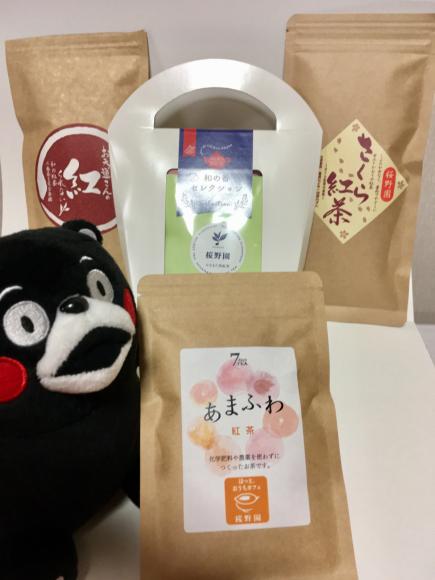 みなまた紅茶・桜野園(水俣市 熊本県)_d0339676_14400114.jpg