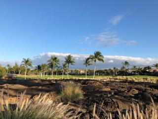 ハワイ島のゴルフ場_a0233991_20200305.jpg