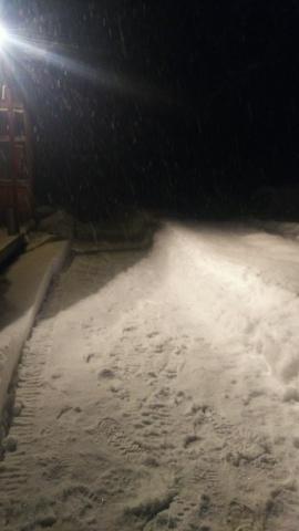 雪・・・降りました。_b0343293_22105744.jpg