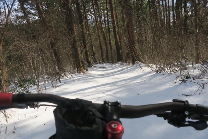 冬→雪→ファットバイクなのですが..._c0132901_17290546.jpg
