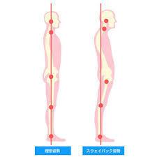 自分の体が「正しい状態」「元の状態」にあるかをチェックする①_d0358103_16583425.jpg