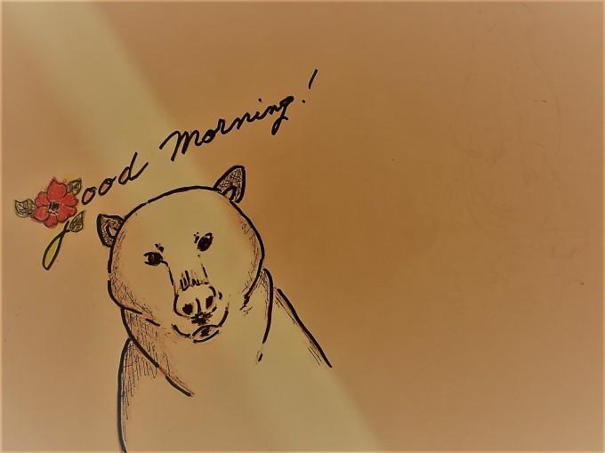 冬眠から醒めました。_a0214206_14473140.jpg