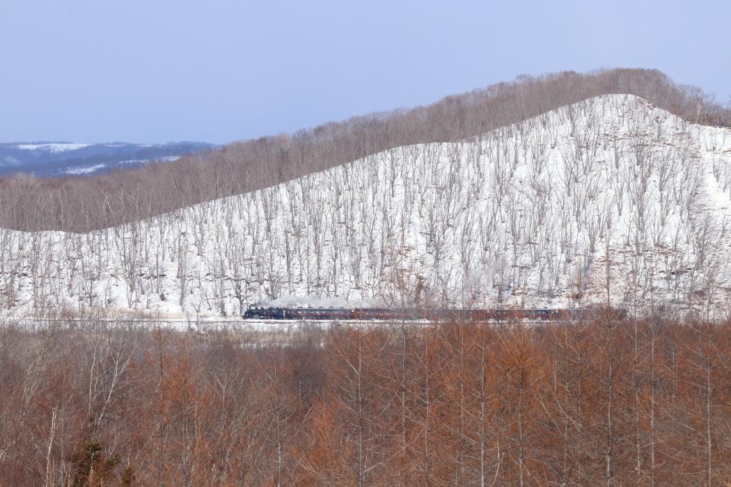 冬の陽射し - 2020年・釧網線 -_b0190710_21272932.jpg