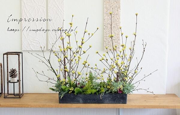 枝ものが楽しい季節_a0085317_19292677.jpg