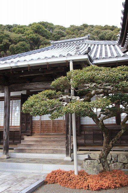 長楽寺と道瀬海岸(撮影:1月31日)_e0321325_16450726.jpg