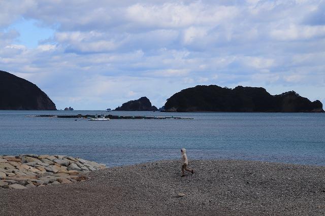 長楽寺と道瀬海岸(撮影:1月31日)_e0321325_16471418.jpg