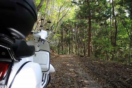 林道へろへろツーリング_f0225627_19302302.jpg