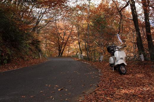 栃木。紅葉。万歳。_f0225627_19424079.jpg