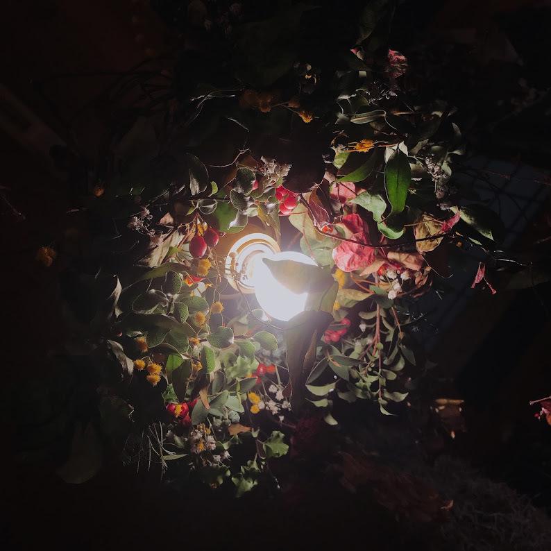 ぐるぐる初雪カズラのリースベース「カズラのベースで表情豊かで自然なリースが・・・。」編_e0359584_08412261.jpg