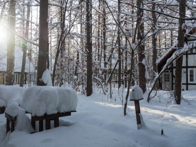 昨日もまた雪・・ついに例年並みの積雪量になりました。_f0276498_23221003.jpg